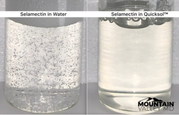 Mountain Valley MD Achieves Solubilization of Selamectin, Files Trademark For Selactosol™: https://www.irw-press.at/prcom/images/messages/2021/57204/MVMD_031021_ENPRcom.001.png