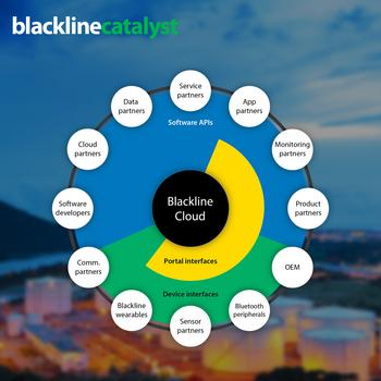Blackline Safety Launches New Partner Program and Appoints Its First Chief Partnership Officer: https://mms.businesswire.com/media/20201202005263/en/843454/5/Blackline_Catalyst_ecosystem.jpg