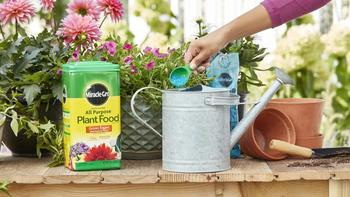 Why Scotts Miracle-Gro, Enphase Energy, and Edison International Jumped Today: https://g.foolcdn.com/editorial/images/533727/smg-miracle-gro.jpg